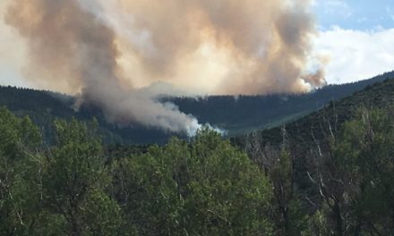 More Counties Restrict Fires
