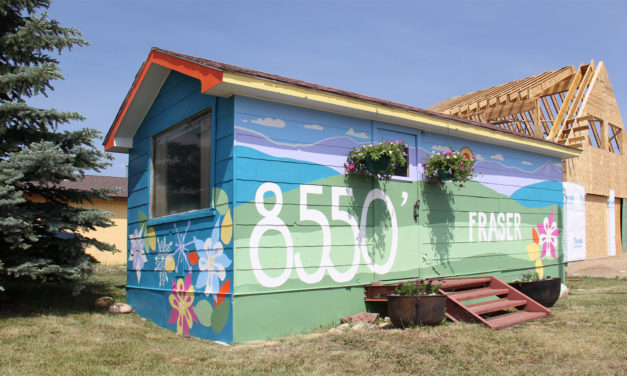 Fraser Public Arts Project