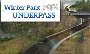 Artist Rendering of Winter Park Under Pass