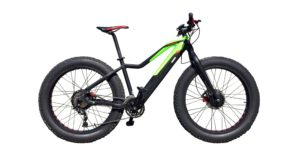 Easy Motion EVO Big Bud Pro Electric Bike