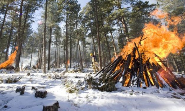 Winter Conditions Mark the Burning Season