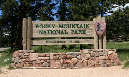 National Parks Under Threat
