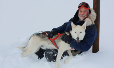 Dog Sledding at Snow Mtn Ranch: A Mushers Life for Me!
