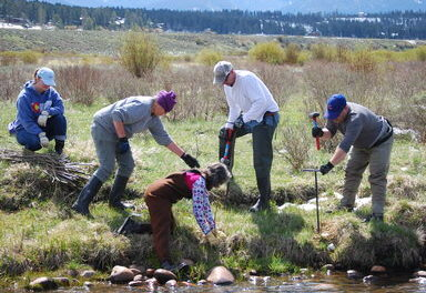 Ranch Creek Vegetation Project Seeking Volunteers