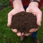New Horizons: Food Waste and Compost Methods