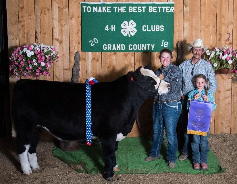 2018 Junior Livestock Sale sets record