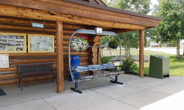 Chairlift Beautification Project draws plenty of interest