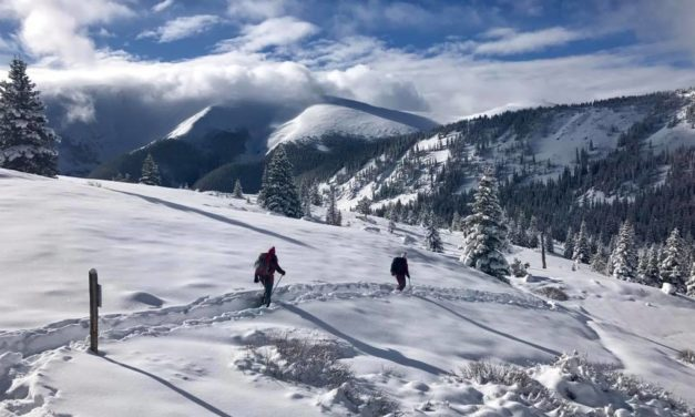 BackCountry CrossCountry Ski Report