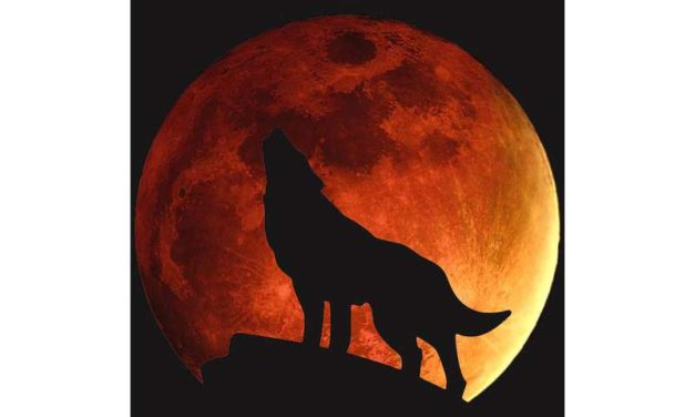 Celestial Event: Super Blood Wolf Moon