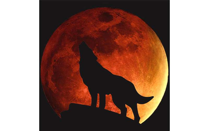 Celestial Event: Super Blood Wolf Moon