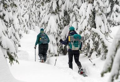 Off-Track Ski Report