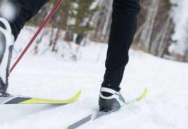 Off Track Ski Report
