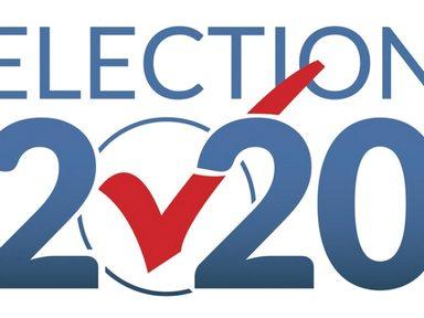 Political Primaries and Caucus 2020