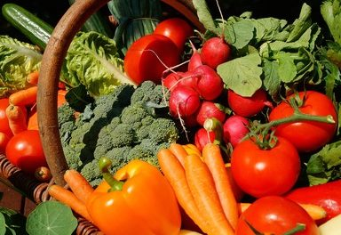 Grand Community Gardens: Best Bets for Grand County Vegetable Gardens