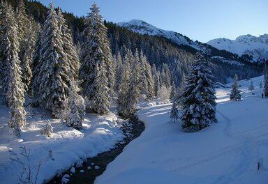 BC-XC Ski Report