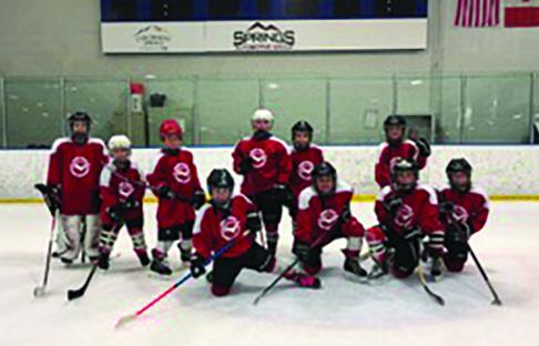 Fraser Valley Hockey's Mites team wraps up their season